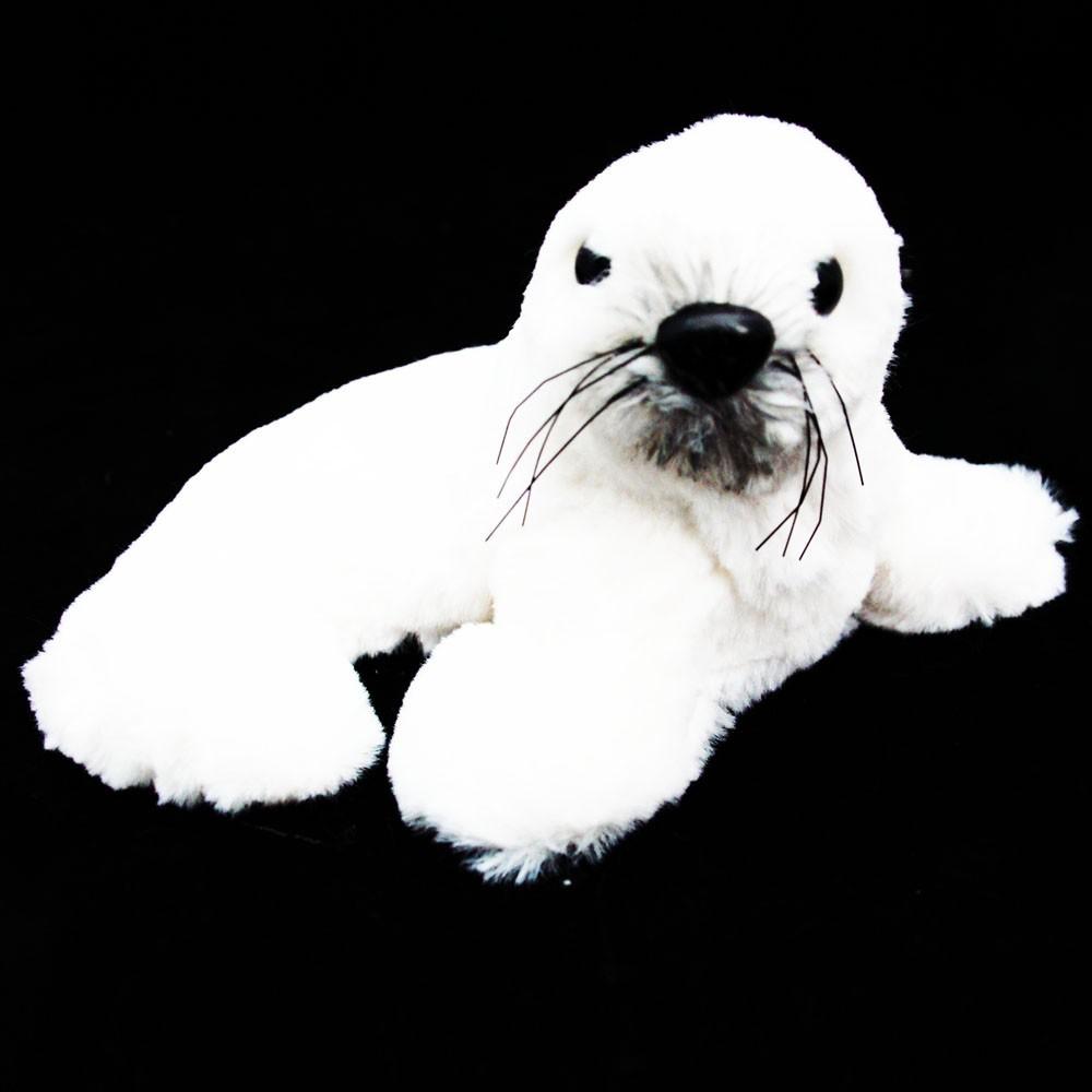Pluszak foczka biała